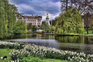 Букингемский дворец. Парк