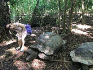 Черепахи Занзибара